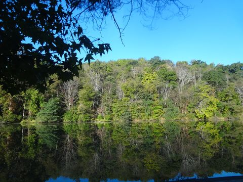Green Trees and Water at Twin Lakes