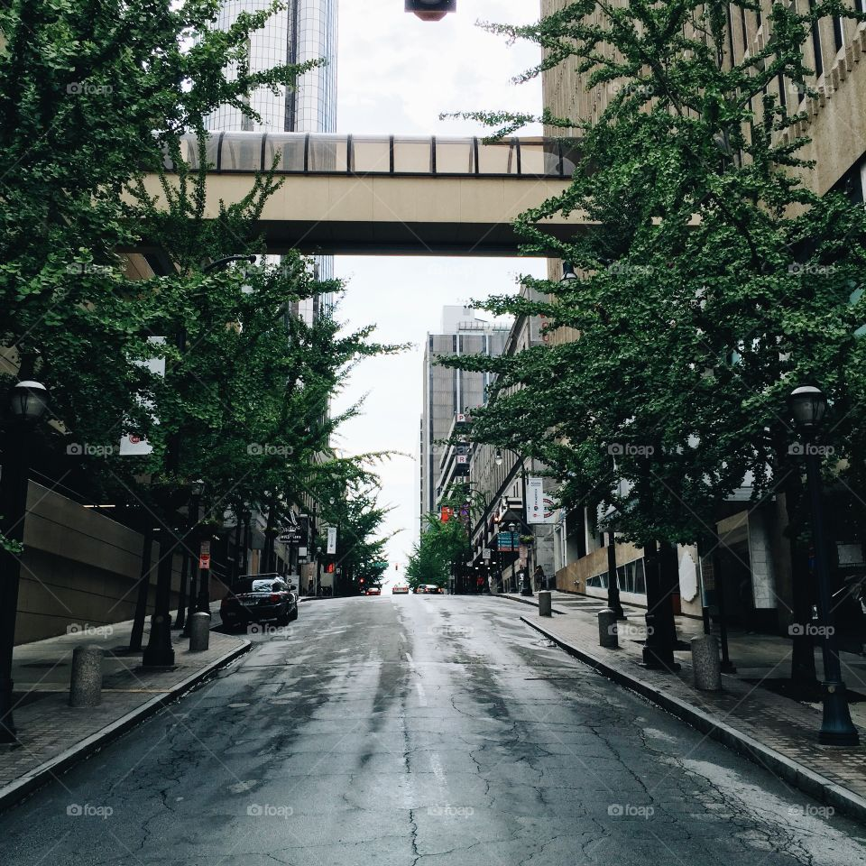Street, Road, City, No Person, Building