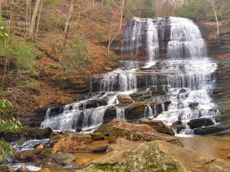 Pearson's Falls In Saluda NC