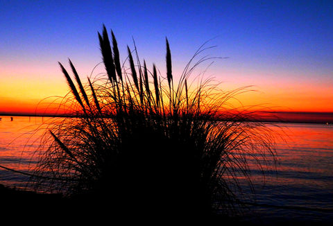 Incredible Sunset! There is nothing as diverse as nature itself. It is a beautiful place; and it is everywhere. I am a haunter of nature  who loves its beauty and solitude. Take a deep breath, relax, open your eyes, and enjoy the ride through my beautiful world of nature!
