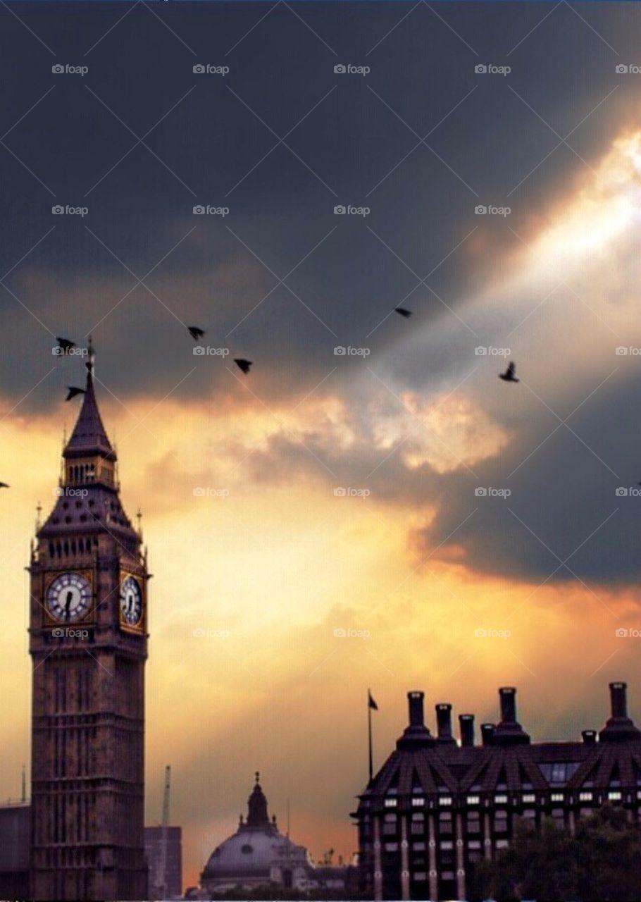 Big Ben birds