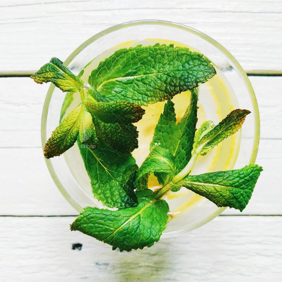 cocktail of lemon and mint leaves