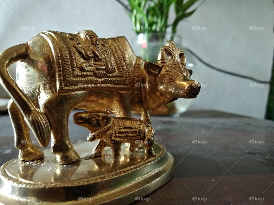 Brass Statue of cow with calf.