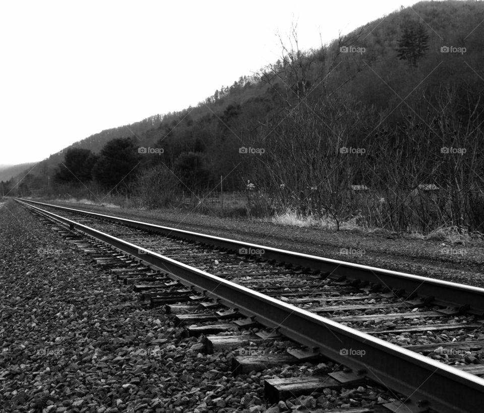 Sizer Run Tracks