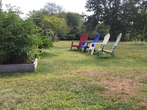 Watching the plants grow: front row seats