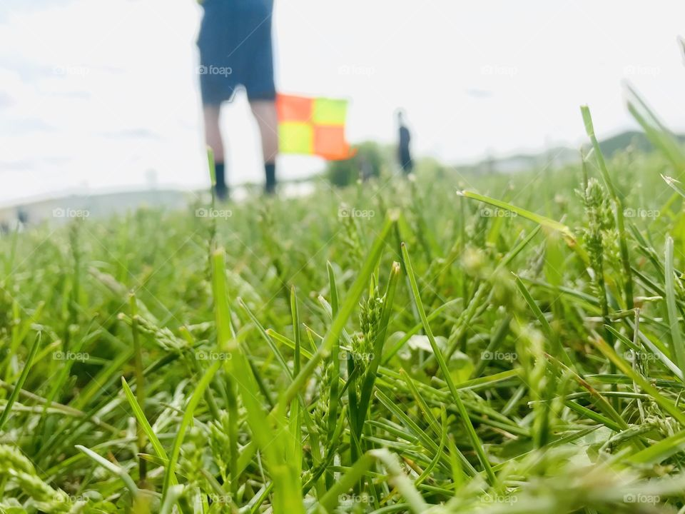 Beautiful close up of green blades of grass on soccer field with stark white cloudy sky!