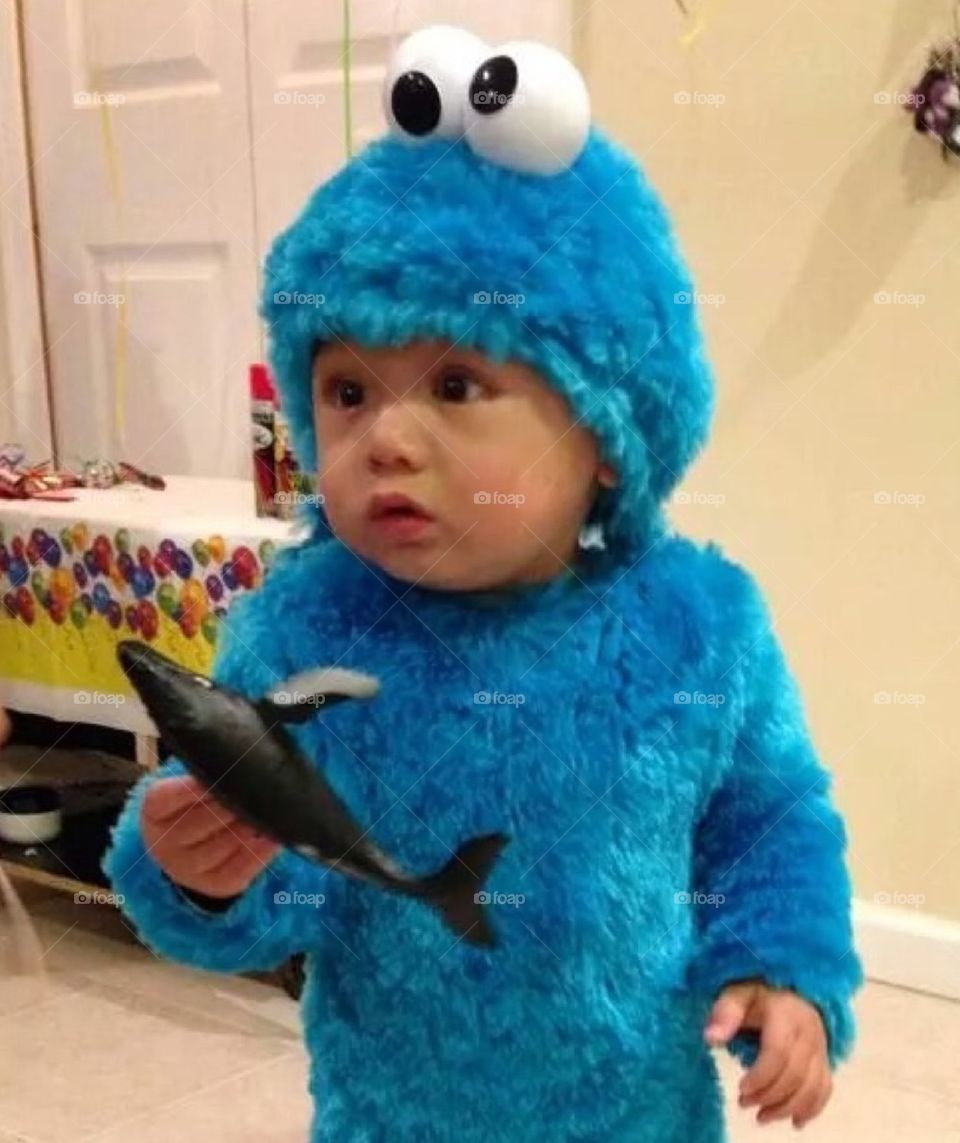 Mini Cookie Monster