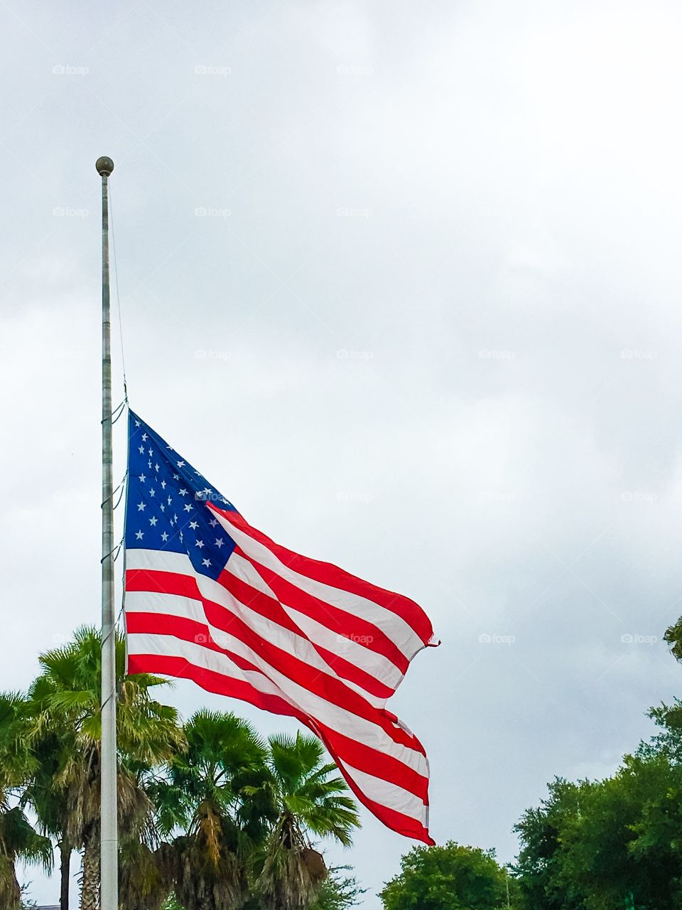 American flag on pole with trees