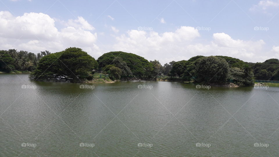 Water, Landscape, River, Tree, Lake