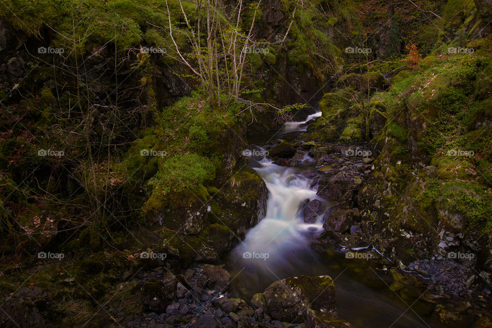 Thirlmere stream. Mountain stream leading down to Lake Thirlmere