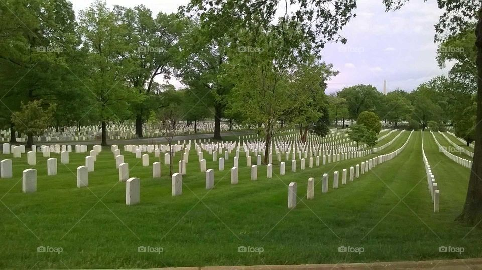 a view of the headstones in Arlington National Cemetery commemorating Fallen Soldiers throughout our nation's Wars