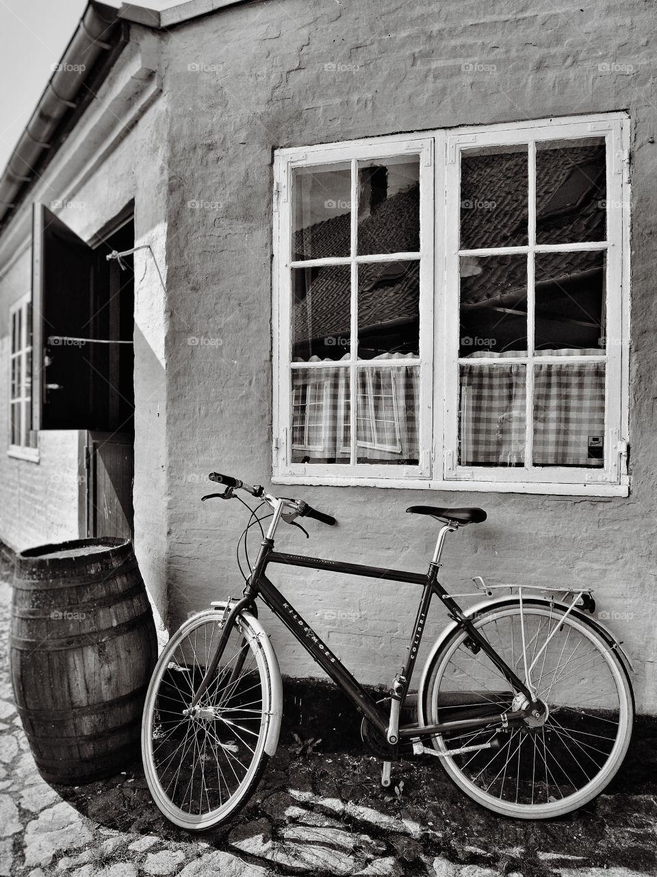 Easy life. Photo taken in Bornholm (Danish island)
