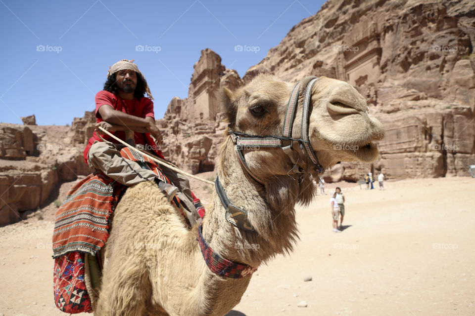 Man sitting on camel in desert