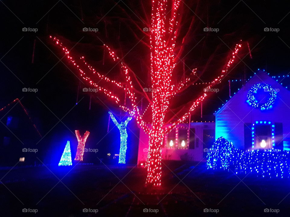 Red Lighted Christmas Tree