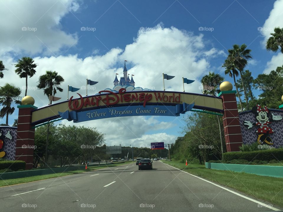 There's no place like Disney World