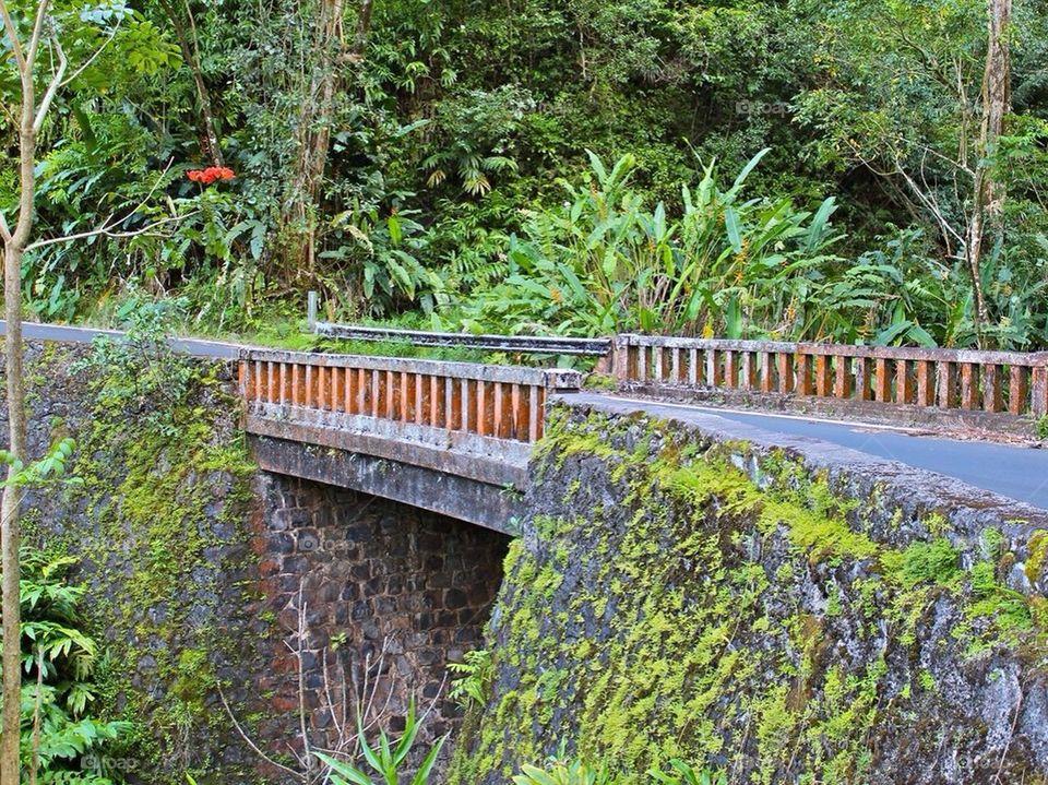 Bridge to Hana