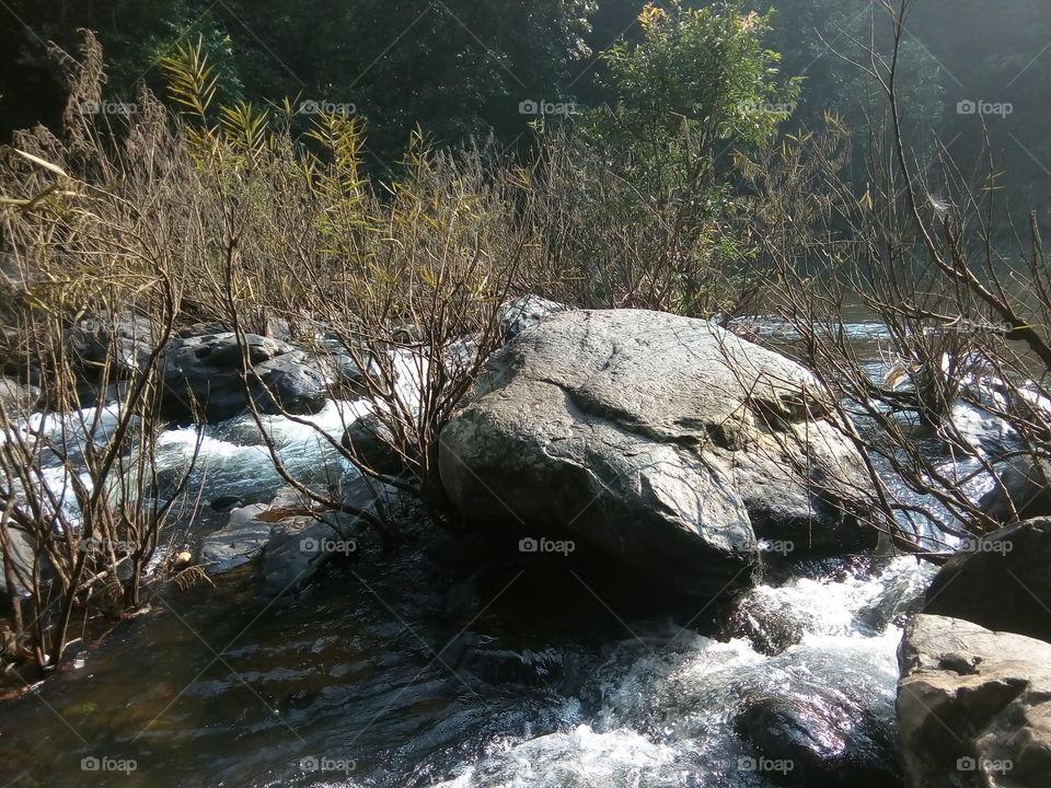 Nature 2017-11-04  033  #আমার_চোখে #আমার_গ্রাম #nature  #devkunda